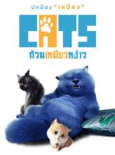 cats ก๊วนเหมียวหง่าว